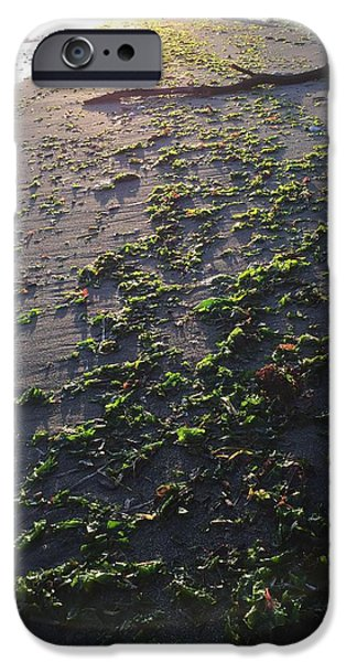Alga Pyrography iPhone Cases - Beach texture iPhone Case by Mark Schuster
