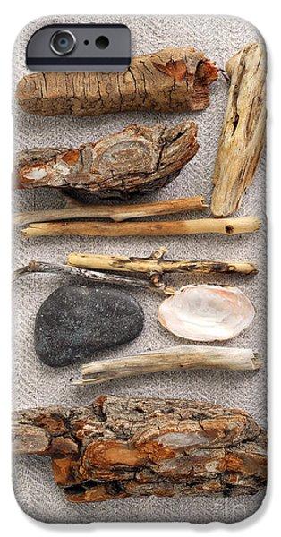 Concept iPhone Cases - Beach treasures iPhone Case by Elena Elisseeva