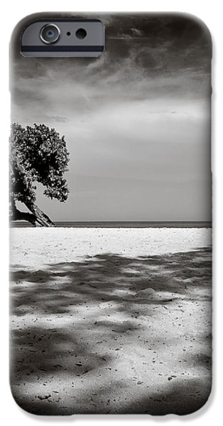 Beach Tree iPhone Case by Dave Bowman