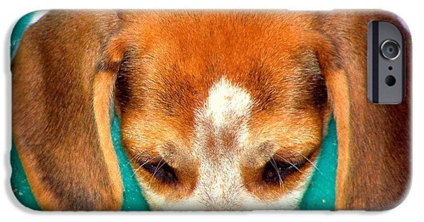 Canine Framed Prints Digital Art iPhone Cases - Beagle Puppy 3 iPhone Case by Lynn Griffin