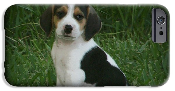 Canine Framed Prints Digital Art iPhone Cases - Beagle Puppy 4 iPhone Case by Lynn Griffin