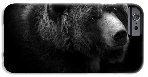 Heads iPhone Cases - Portrait of Bear in black and white iPhone Case by Lukas Holas