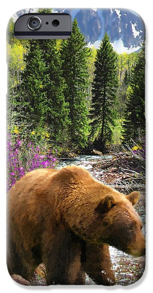 Yukon Territory iPhone Cases - Bear Necessities iPhone Case by Doug Kreuger
