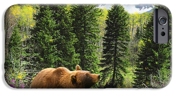 Yukon Territory iPhone Cases - Bear Necessities Ill iPhone Case by Doug Kreuger