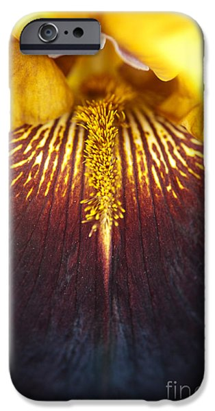 Beard iPhone Cases - Bearded Iris Supreme Sultan iPhone Case by Tim Gainey