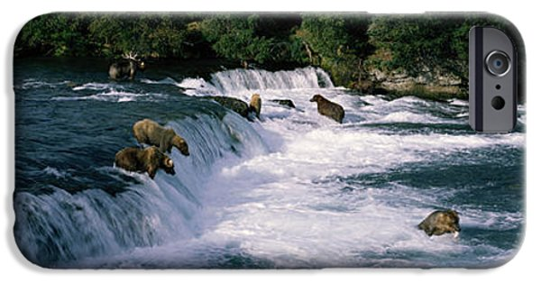 Fall iPhone Cases - Bears Fish Brooks Fall Katmai Ak iPhone Case by Panoramic Images