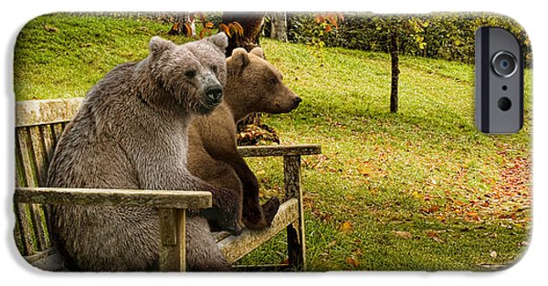 Born Adult iPhone Cases - Bears Sitting On A Bench iPhone Case by Panoramic Images