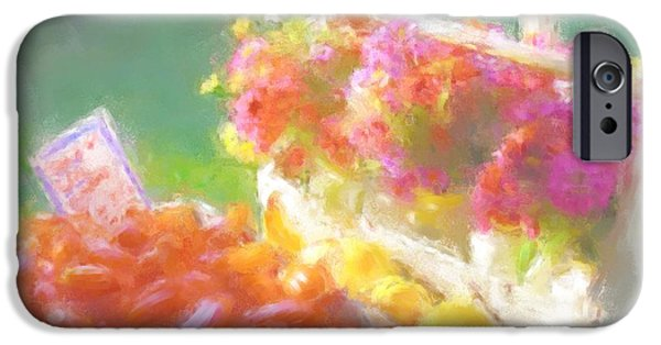 Maine Bounty iPhone Cases - Beautiful Bounty 1035 20140927 iPhone Case by Julie Knapp