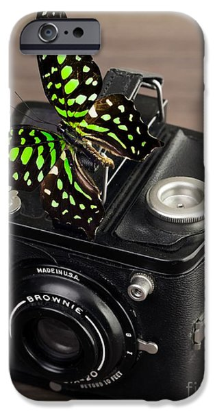 Blossom iPhone Cases - Beautiful Butterfly on a Kodak Brownie Camera iPhone Case by Edward Fielding