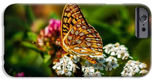 Haybale iPhone Cases - Beautiful Butterfly iPhone Case by Robert Bales