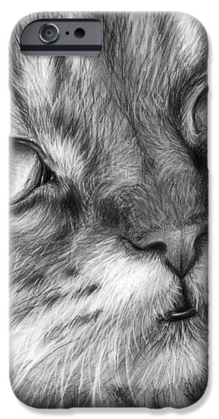 Beautiful Cat iPhone Case by Olga Shvartsur