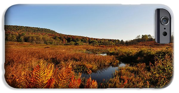 Fall iPhone Cases - Beautiful clear crisp fall day Canaan Valley iPhone Case by Dan Friend