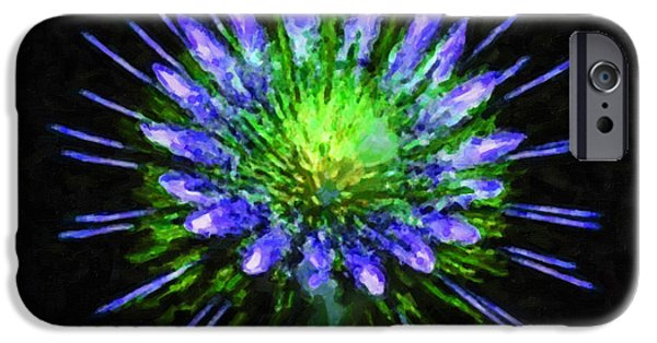 4th July Paintings iPhone Cases - Beautiful colorful holiday fireworks 1 iPhone Case by Lanjee Chee