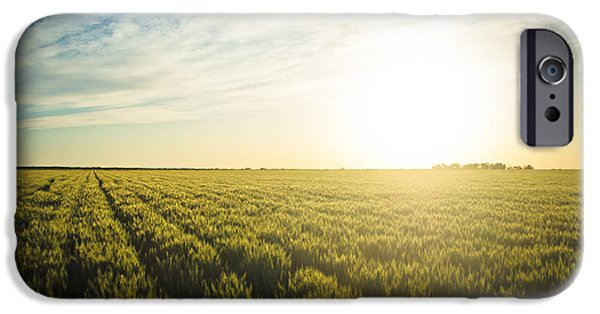 Agriculture iPhone Cases - Beautiful Countryside iPhone Case by Mesha Zelkovich