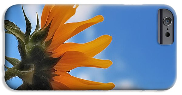 Radiating Light iPhone Cases - Beautiful Day iPhone Case by Steven Milner