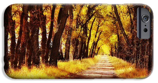 Nebraska iPhone Cases - Beautiful Fall Day in Nebraska iPhone Case by Julie Hamilton