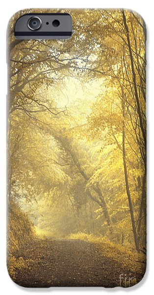 Alley Photographs iPhone Cases - Beautiful Fall iPhone Case by Evelina Kremsdorf