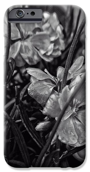 Beautiful Floral Blossoms iPhone Case by Michael Braham