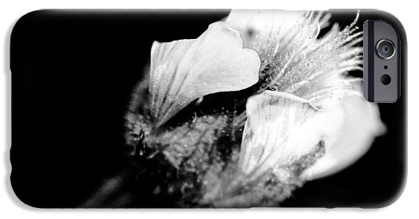 Close Up Floral Mixed Media iPhone Cases - beautiful flower BW iPhone Case by Toppart Sweden