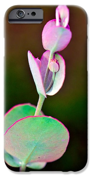 Flora Mixed Media iPhone Cases - Beautiful   Flower Pink And Green iPhone Case by Toppart Sweden