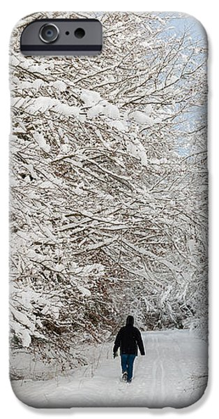 Beautiful forest in winter with snow covered trees iPhone Case by Matthias Hauser