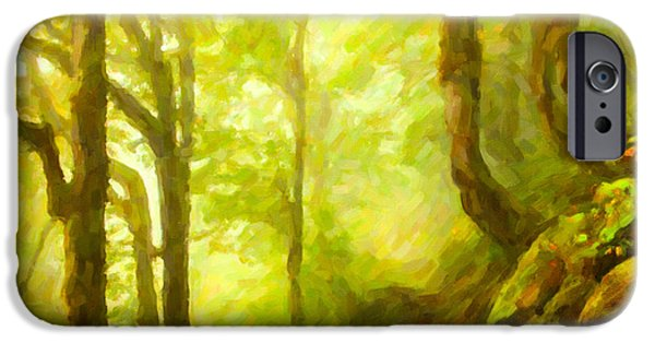 Asphalt Paintings iPhone Cases - Beautiful forest with fog between trees iPhone Case by Lanjee Chee