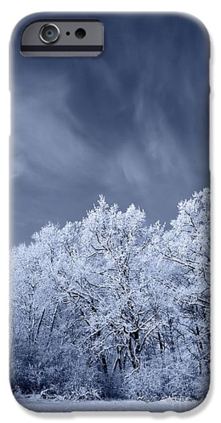 Winter Storm iPhone Cases - Beautiful Landscape With A Stormy Wind iPhone Case by Dan Radi
