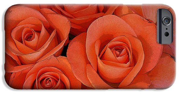Abstract Flowers Images iPhone Cases - Beautiful peach roses 2 iPhone Case by Carol Lynch