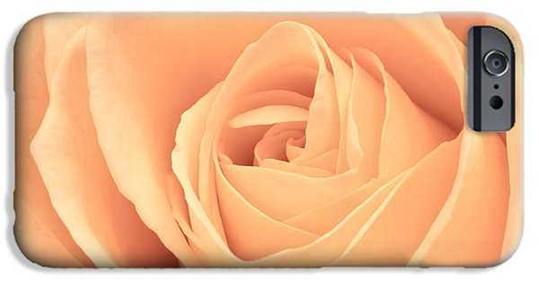 Sympathy iPhone Cases - Beautiful Pink Rose Square Format iPhone Case by Edward Fielding