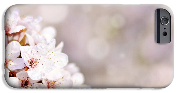 Fukushima iPhone Cases - Beautiful spring cherry tree with flowers and bokeh  iPhone Case by Aleksandar Mijatovic