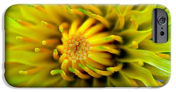 Flora Mixed Media iPhone Cases - Beautiful spring flowers iPhone Case by Toppart Sweden