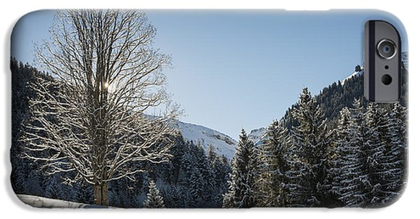 Snowy Day iPhone Cases - Beautiful tree in snowy landscape on a sunny winter day iPhone Case by Matthias Hauser