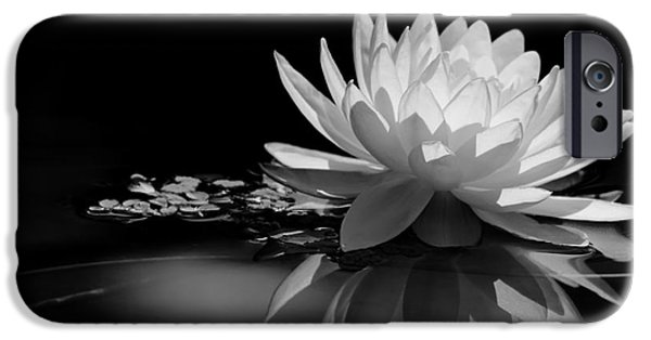 Florida Flowers Photographs iPhone Cases - Beautiful Water Lily Reflections iPhone Case by Sabrina L Ryan
