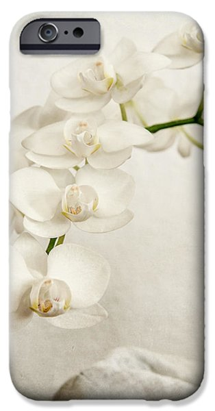 Beautiful white orchid II iPhone Case by Hannes Cmarits