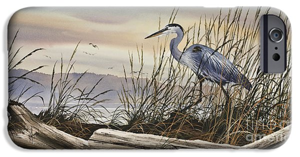Stretched Canvas iPhone Cases - Beauty Along the Shore iPhone Case by James Williamson