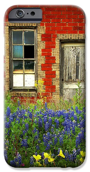 Floral Art iPhone Cases - Beauty and the Door - Texas Bluebonnets wildflowers landscape door flowers iPhone Case by Jon Holiday