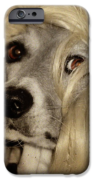 Beauty iPhone Case by Gothicolors Donna Snyder