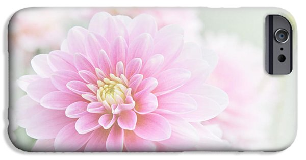 Soft Colour iPhone Cases - Beauty IV iPhone Case by Sharon Mau