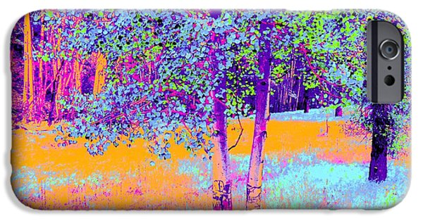 Ann Johndro-collins iPhone Cases - Beauty of an Aspen Grove iPhone Case by Ann Johndro-Collins