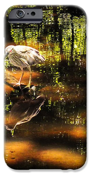 BEAUTY of the BOG iPhone Case by KAREN WILES