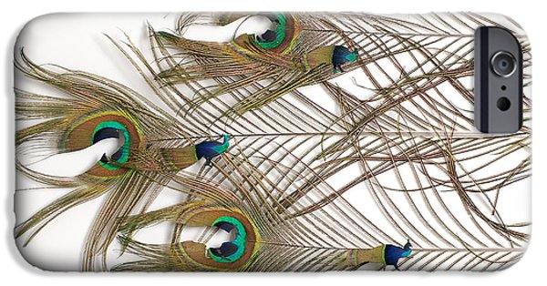 Birds Reliefs iPhone Cases - Beauty on the Move iPhone Case by Chris Maynard
