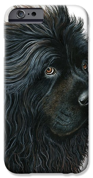 Newfoundland iPhone Cases - Beauty without Vanity iPhone Case by Liane Weyers