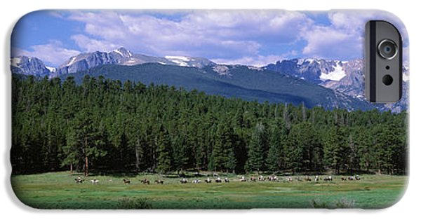 Meadow Photographs iPhone Cases - Beaver Meadows Rocky Mountain National iPhone Case by Panoramic Images