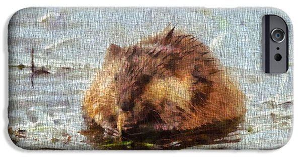 Beaver iPhone Cases - Beaver Portrait On Canvas iPhone Case by Dan Sproul