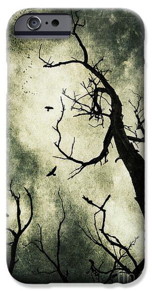 Dark Skies iPhone Cases - Beckoning iPhone Case by Andrew Paranavitana