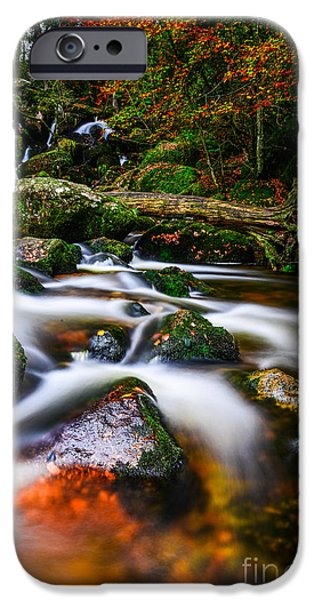 Becky Photographs iPhone Cases - Becky Falls iPhone Case by Tracey Yeo