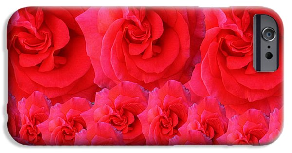 Multimedia iPhone Cases - Bed Of Red Roses iPhone Case by Tina M Wenger