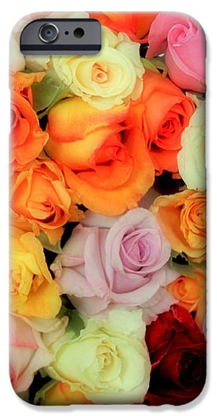 Bed of Roses iPhone Case by TONY GRIDER