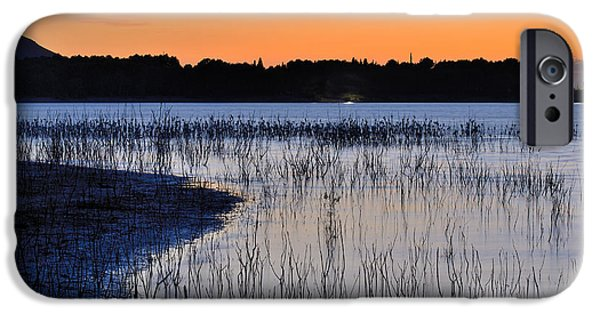Cattle Egret iPhone Cases - Bedtime. The Cattle Egret iPhone Case by Guido Montanes Castillo