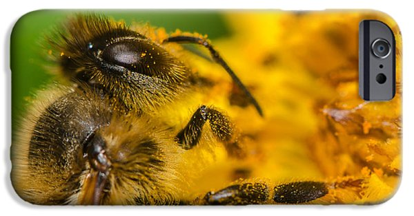 Banzai iPhone Cases - Bee at work iPhone Case by Tin Lung Chao